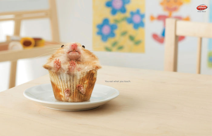funny-ads-with-animals-11