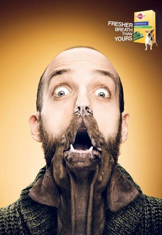 funny-ads-with-animals-56