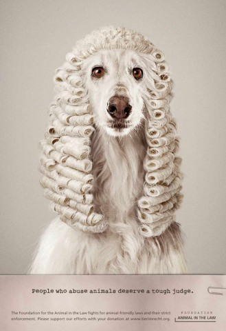 funny-ads-with-animals-59