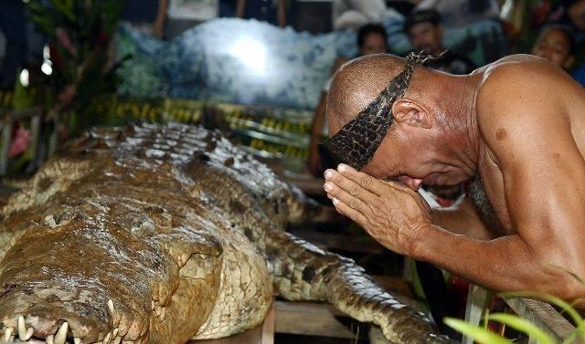 Diemžēl, pēc ilgu gadu draudzības reptilis nomira dabīgā nāvē. Počo bēres Čito sarīkoja tādas, kādas pienākas labākajam draugam...