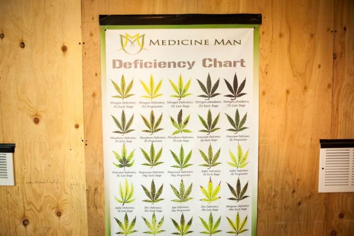 Informatīvs plakāts Medicine Man aptiekā Denverā