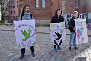 Doma laukumā pieprasa marihuānas legalizāciju Latvijā