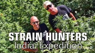 strainhunters_india
