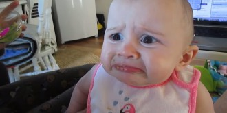 bebis-avokado