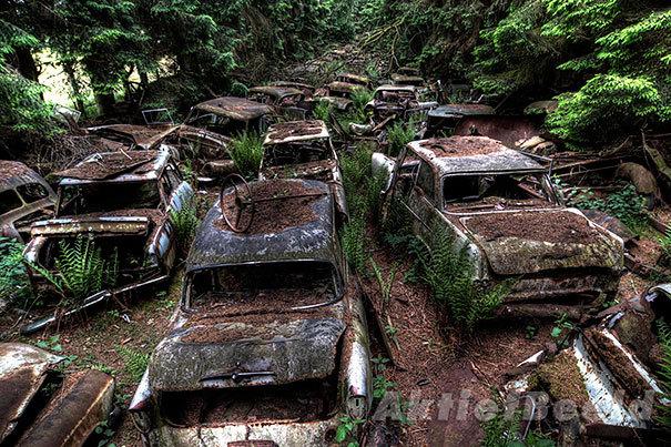chatillon-car-graveyard-abandoned-cars-cemetery-belgium-10