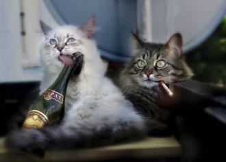 ar alkoholismu