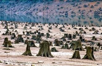 Mežu izciršanas rezultāts neiedvesmo uz dzeju, vai ne? Vilametas ieleja, Oregonas štats, ASV