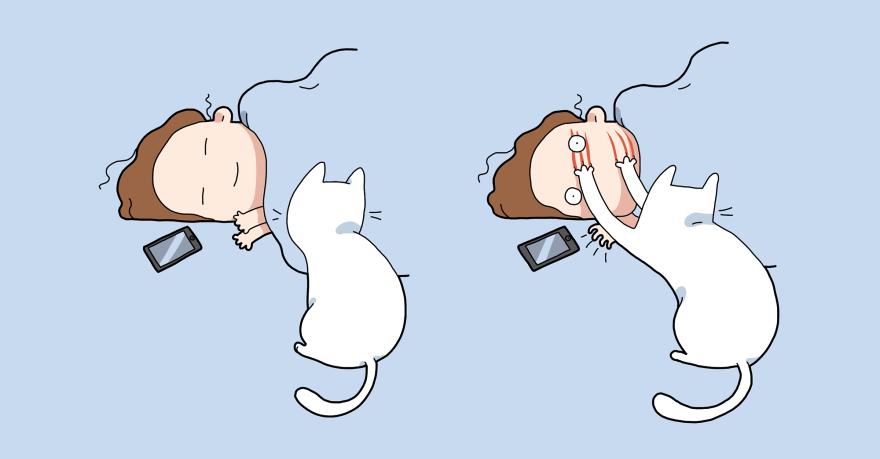 1. Kaķis ir vislabākais modinātājs