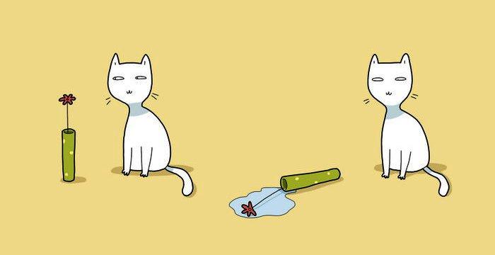 2. Kaķis visas lietas noliks pareizi