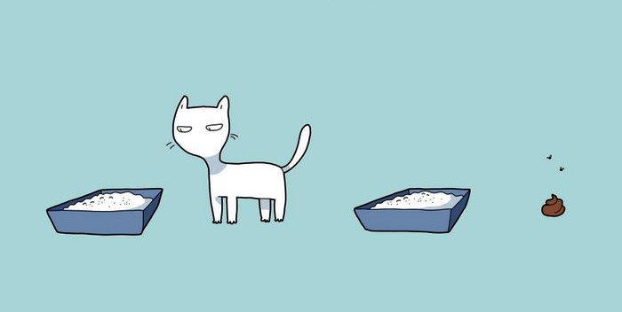 3. Kaķis iemācīs pretoties sistēmai