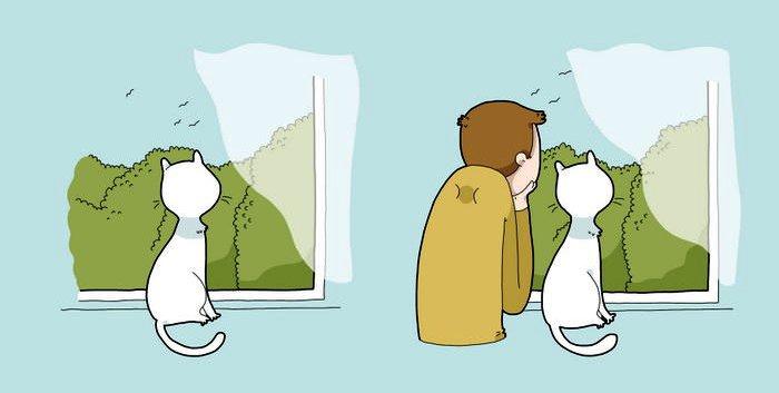 5. Kaķis jums iemācīs mest darbu pie malas un saskatīt, cik skaista ir pasaule