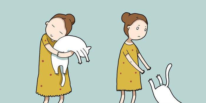 6. Kaķis jums iemācīs netērēt laiku muļķībām