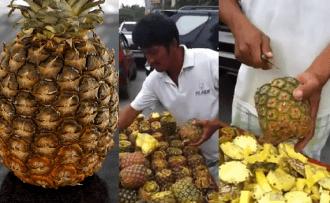 ka-sagriezt-ananasu