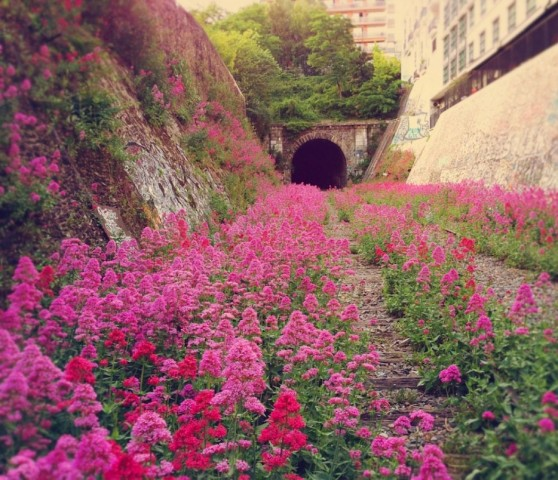 Chemin de fer de Petite Ceinture, Francija Šis dzelzceļš tika uzbūvēts 1852. gadā, lai apgādātu Parīzes nocietinājumus. Kad 1934. gadā tos pārtrauca izmantot, arī sliežu ceļš tika pakļauts aizmirstībai.