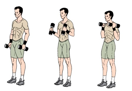 breda-pita-treninu-programma-15