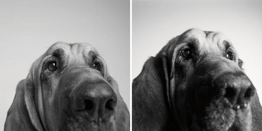 Kūpers - 3 gadi un 10 gadi