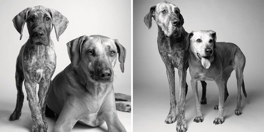 Kaidens un Brodijs — 11 mēneši un 5 gadi; 7 gadi un 12 gadi