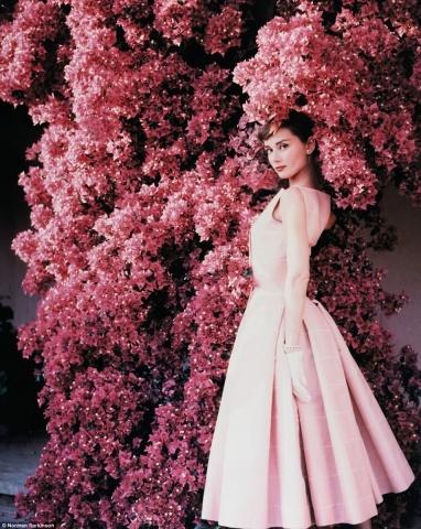 Odrija Hepberna pozē 1955.gada žurnālam Vogue. Fotogrāfija uzņemta villā Albānijas kalnos Lacio reģionā Itālijā. Šeit Odrija un viņas dzīvesbiedrs Mels Ferers aizvadīja savu medus mēnesi.