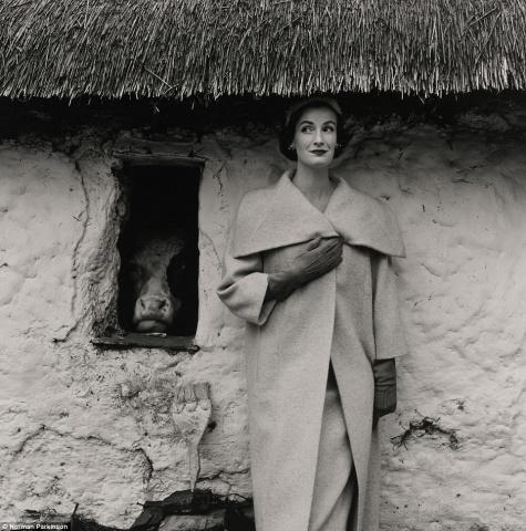 """Fotogrāfija """"Venda un govs"""" 1954.gada žurnālam Vogue, kuras autors ir Normans Pārkinsons. Modeles lomā – fotogrāfa sieva Venda Pārkinsone. Orientējošā sākumcena: no 2 000 līdz 3 000 sterliņu mārciņām."""