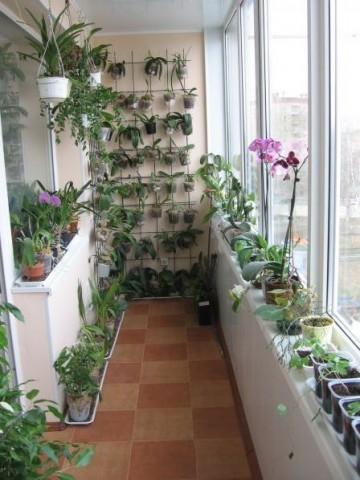 balkons-29-originalas-idejas-kas-kaiminus-padaris-zalus-no-skaudibas11