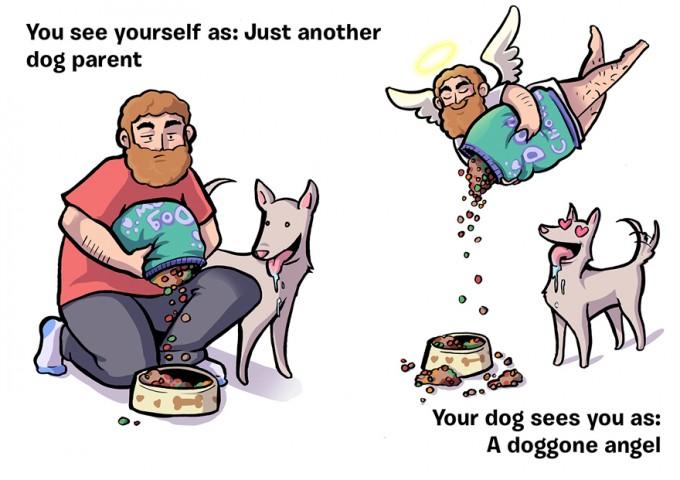 Mēs: Visparastākais suņa saimnieks - Suns: Suņu enģelis