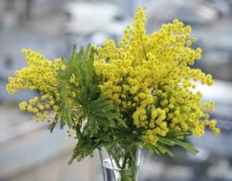Ziedi sievietei