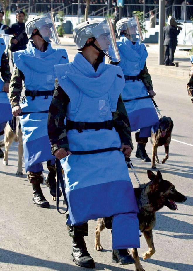 ermigakas-militarpersonu-uniformas-pasaules-valstu-armijas-02