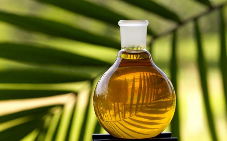 palmu eļļa