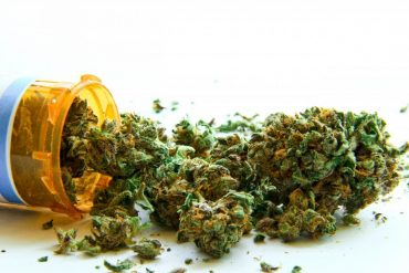 legalizē marihuānu