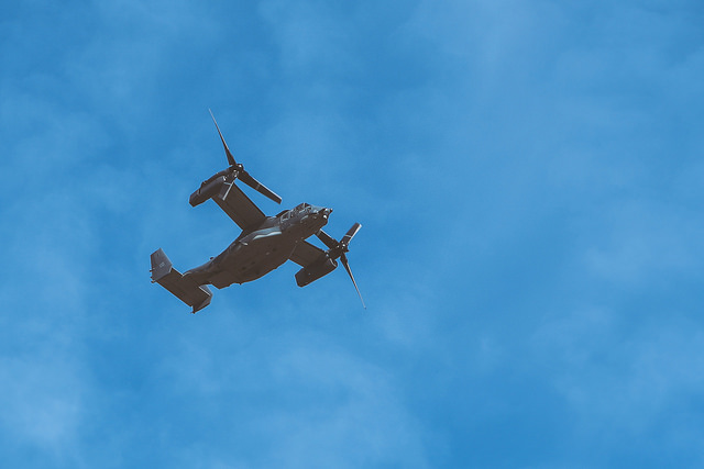 osprey-14